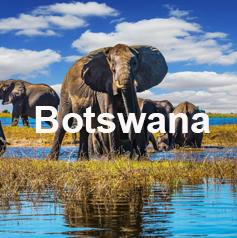 viajar solo por botswana